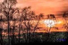 Zonsondergang-Aamsveen