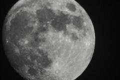 Maan-8